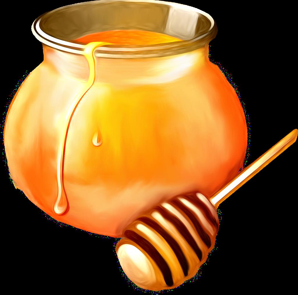 Картинки мед на белом фоне
